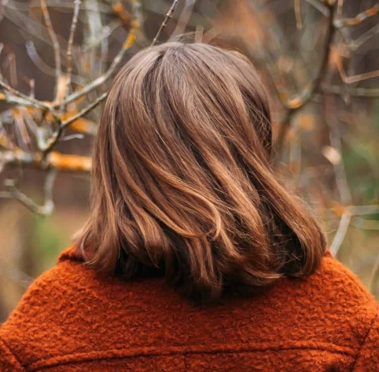 cheveux bruns raides avec des reflets