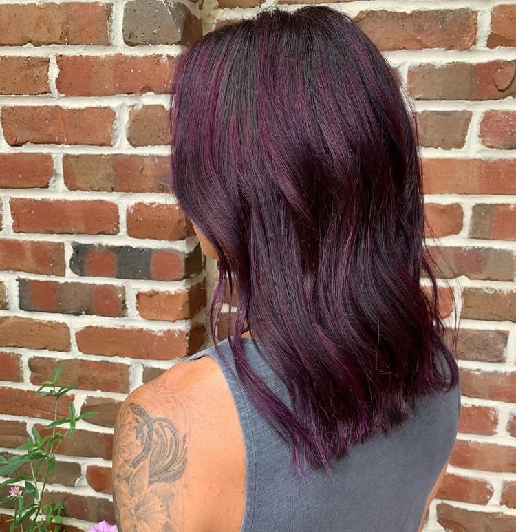 mèches de cheveux prune